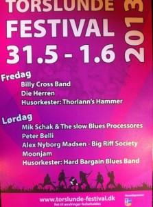 Festival 2013